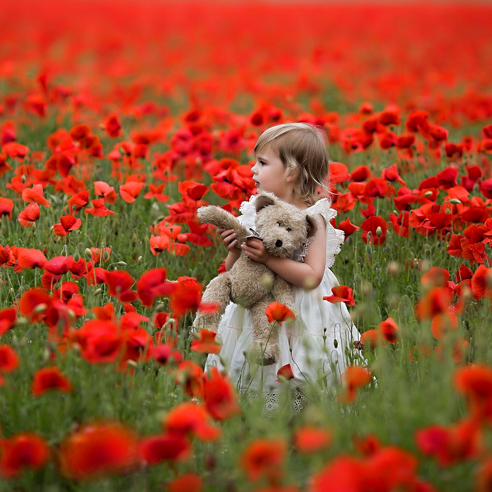 poppy field mini sessions ipswich