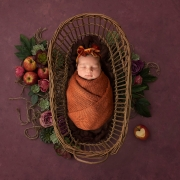 newborn photographer ipswich newborn baby photos ipswich suffolk autumn apples